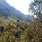 2015-04-12-Altiplus-Le_Reveston-Photos_Chantal-11