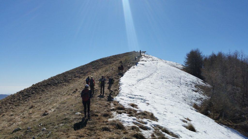 ALTIPLUS Bévéra - Le Mont Mangiabo